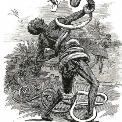 690px-Punch_congo_rubber_cartoon.jpg